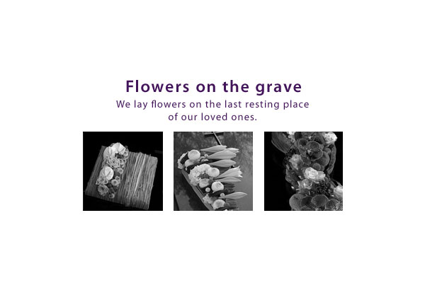 gallery_start_EN_flowers_on_grave