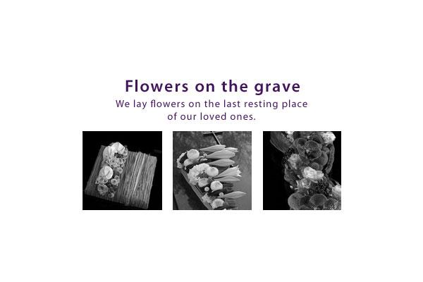gallery_start_EN_flowers_on_grave