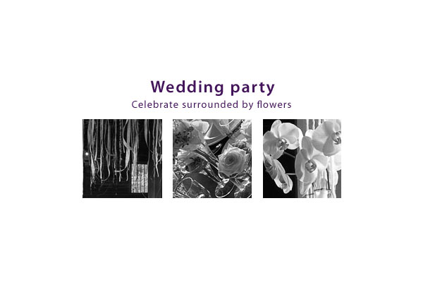 gallery_start_EN_wedding_party
