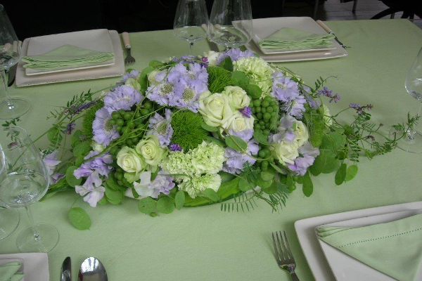 cleome_tafelen_groen